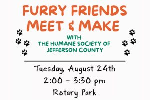 meet-and-make-feature-aug